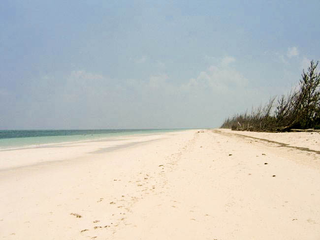 Beachfront Tract in High Rock, Grand Bahama/Freeport,