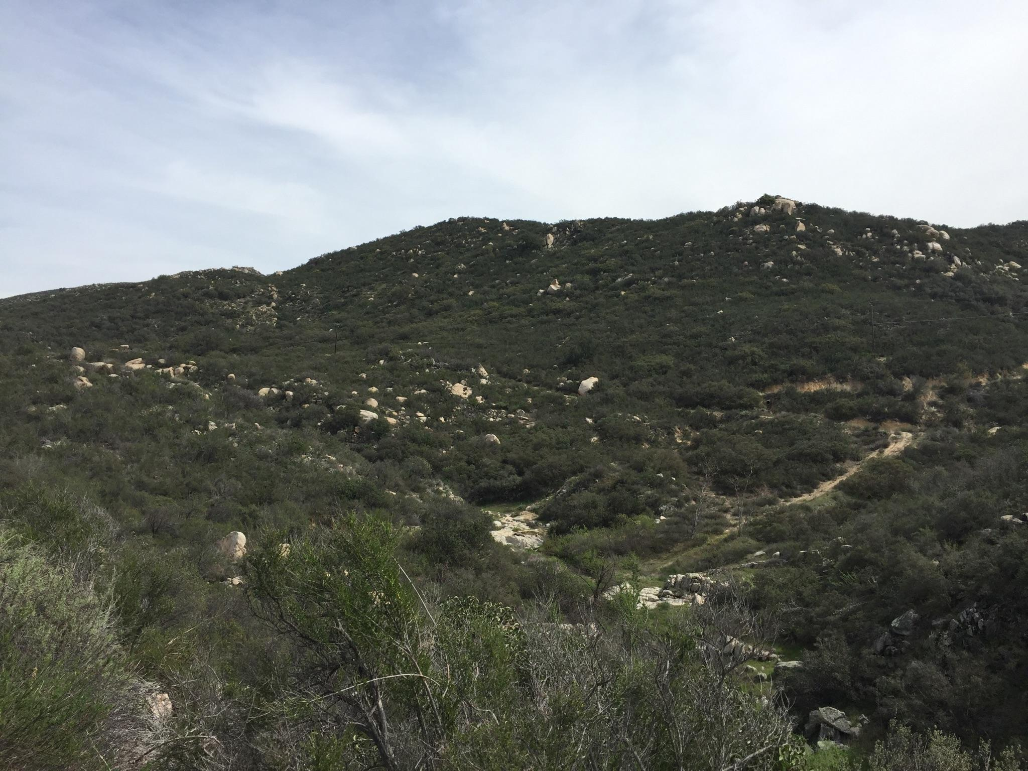 34390 Ortega Highway, Ortega Mountain, CA 92530
