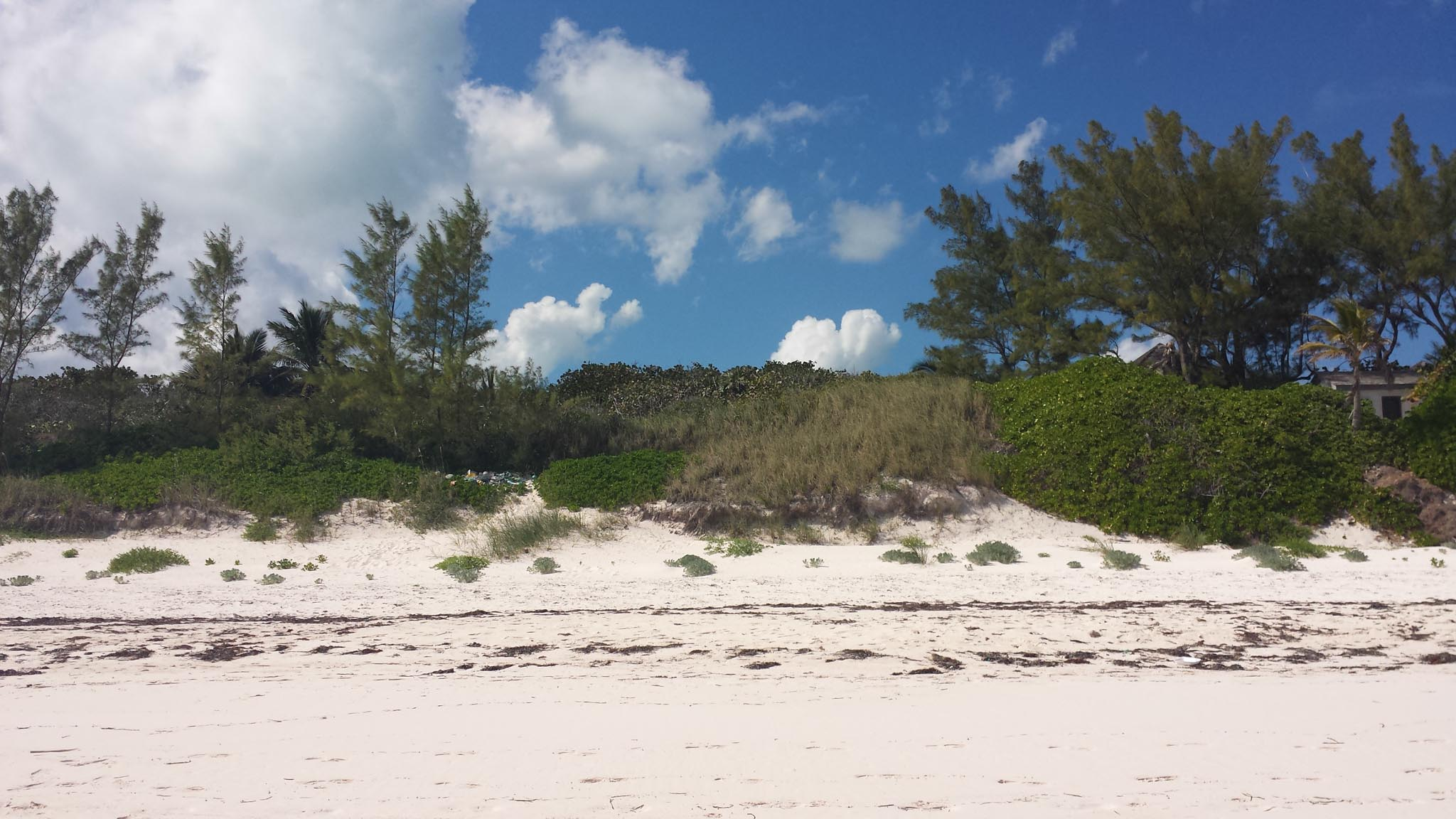 Beach Lot 29, ,