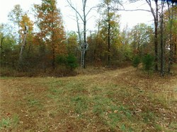 Lands End Road is 20 acres, Chester, AR 72934