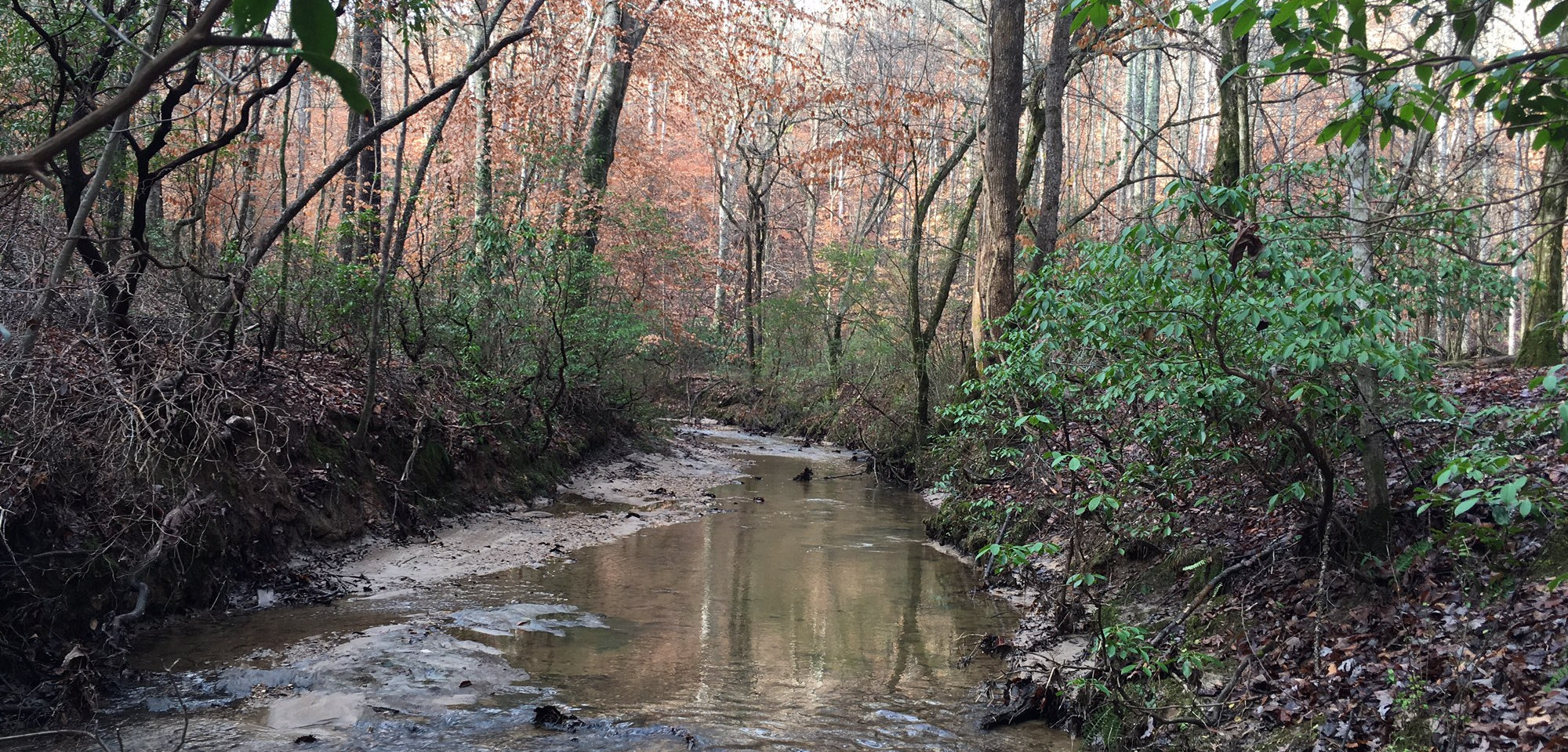 27 acre wooded property on the Northeast side of Gainesville GA. Located contiguous to the city limits of Gainesville. Over 750 feet road frontage and 1,500 feet on wide, fast flowing Floyd Creek which feeds into the North Oconee River. Property includes some drivable forest roads and an approximately 2 spring fed pond. Lots of wild life and good deer hunting. There are 2 old homes, a mobile home, and old bomb shelter on property - all in disrepair with no value. Located 2 miles to I-985 and 4 miles to downtown Gainesville.