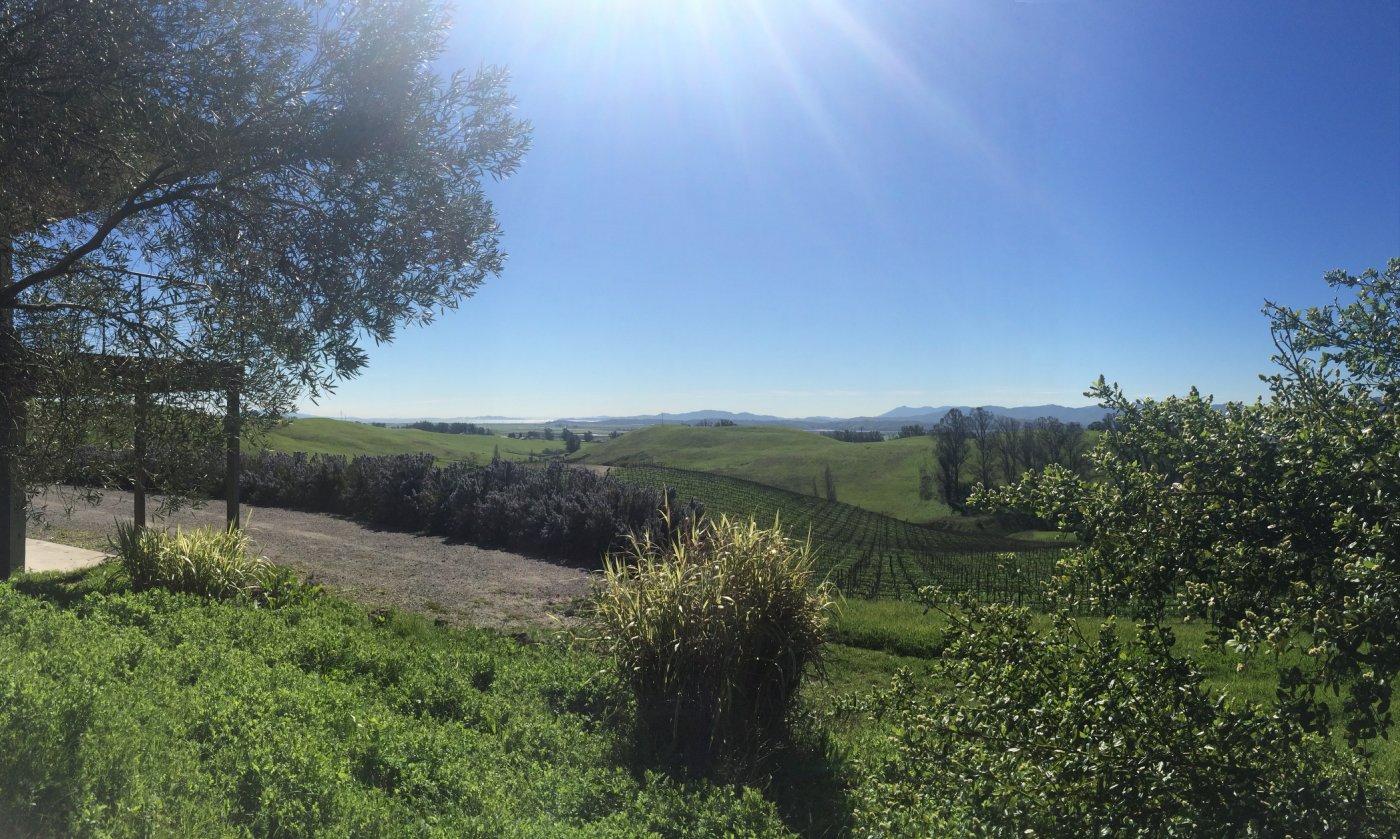 6509 Lakeville Highway, Petaluma, CA 94954